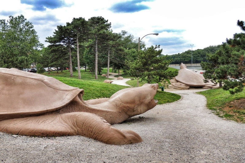 Turtle Playground, Forest Park Forever